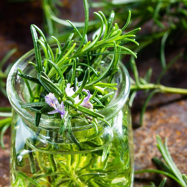 Antioxidant with Rosemary_v22