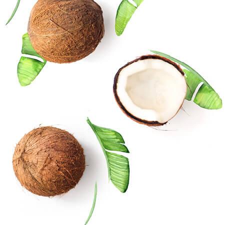 Coconut Flavour Oil