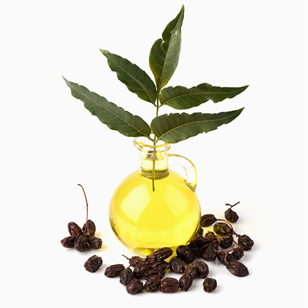 Neem oil – refined