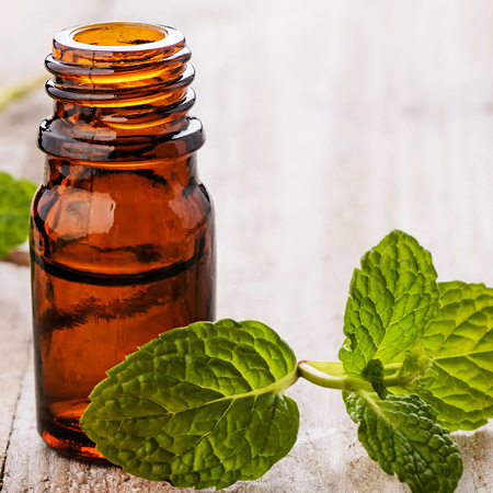 Peppermint Essential Oil2