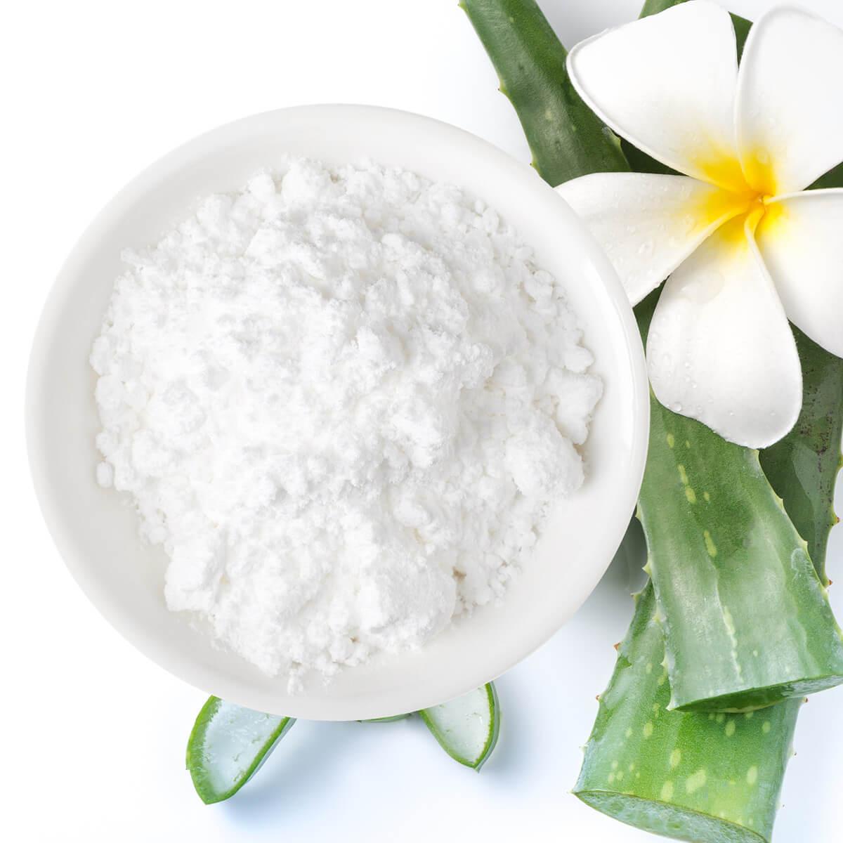 Aloe vera powder_organic