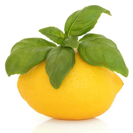 Lemon Verbana Essential Oil – Nature Identical