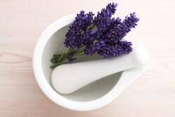 Lavender Flower Powder *