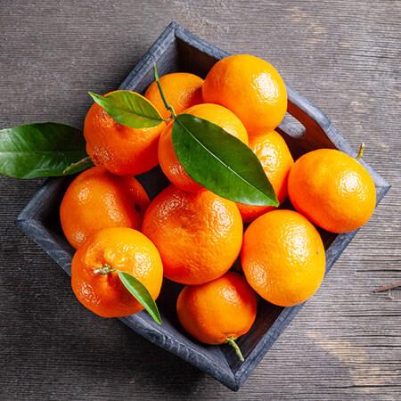 Mandarin Jasmine FO