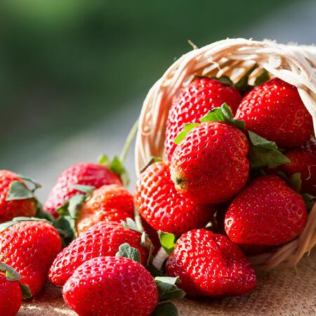 Strawberry FO