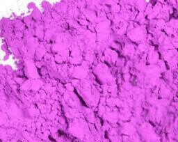 Neon Purple Play Date