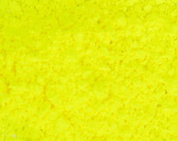 Neon Yellow Electric Slide