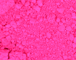 Neon Pink Hot Pants