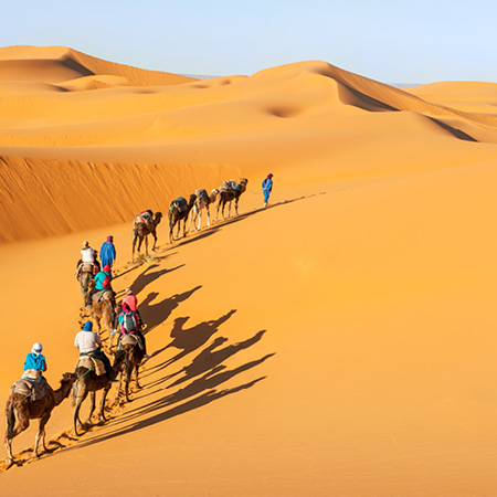 Sands of Morocco FO