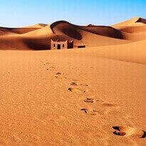 Sands of Morocco Fragrance Oil
