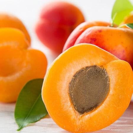 Fresh Apricot2